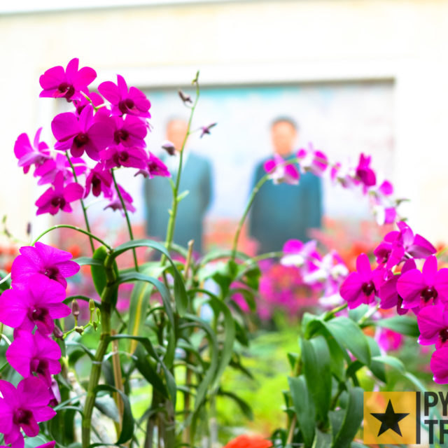 Blumenausstellung Kimilsungia